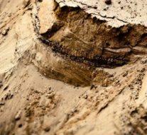 Dobry piach budowlany – gdzie kupić?